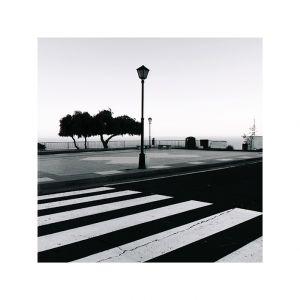 zebra, Radazul Tenerife