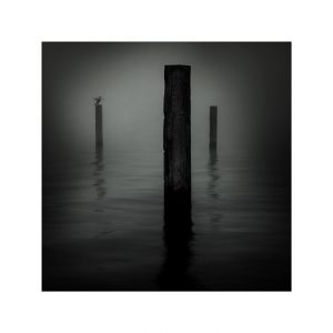 Bollards in Fog #1